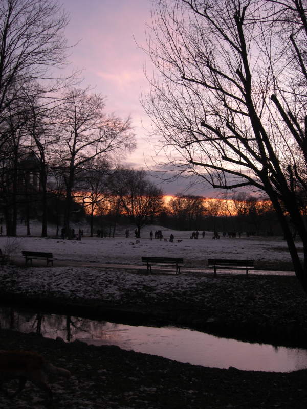 winterspaziergang-englischer-garten