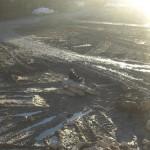 Sonneninsel, mitten im Isarmatsch