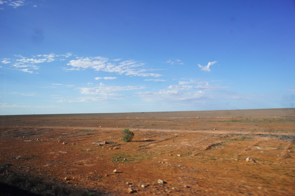 The truly treeless Nullarbor plain