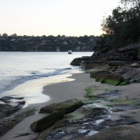A secluded beach on the Manly to Spit Bridge Walk