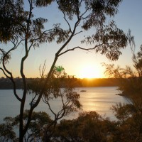 Sunset on the Manly to Spit Bridge Walk
