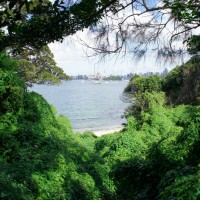 Neutral Bay to Taronga Zoo Walk