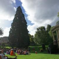 Music festival in Hobart