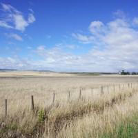 The tasmanian midlands