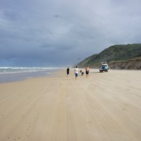 Finding Wongs for dinner, Fraser Island
