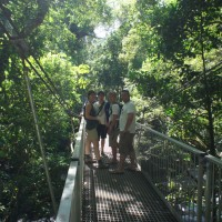 Mossman Gorge rainforest walk