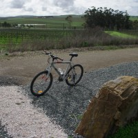 Clare Valley Riesling Trail