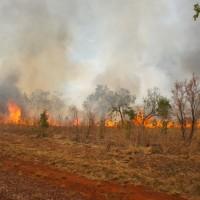 Kimberley highway bushfire