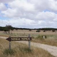 Ninga Ninga, South Australia