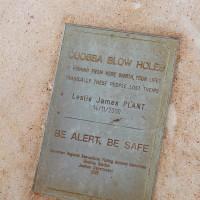 blowholes kill
