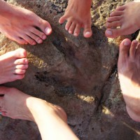 Dinosaur Footprints, Broome, Gantheaume Point