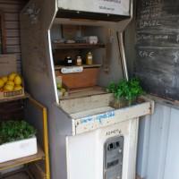 A fruit stall at Warren National Park, Western Australia